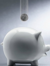 white piggy bank